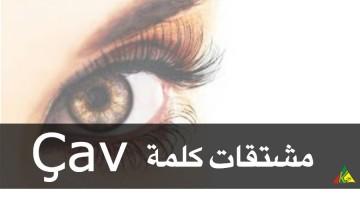 تعلم اللغة الكردية learn-kurdish
